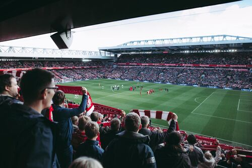 Sportbonden en -clubs