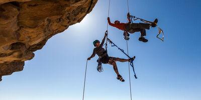 Terugblik Webinar Riskmanagement 9 september – Zo ga je om met de wilde risico's in je bedrijf